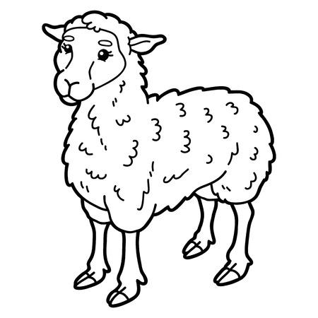 ovejitas: Ilustración vectorial de lindo personaje de ovejas de dibujos animados para los niños, para colorear