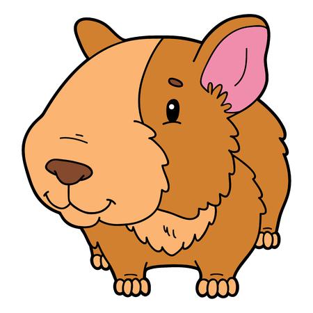 guinea pig: Illustration of cute cartoon animal
