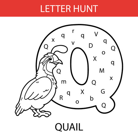 Vector illustration of printable kids alphabet worksheets educational game Letter hunt for preschool children practice with cartoon character - quail