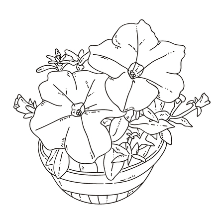 Vector illustration of coloring page with flowers