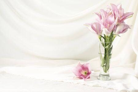Lily pink or purple in glass vase on white fabric