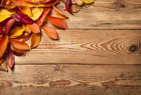 Autumn leaves on wooden background with copy space  Top view