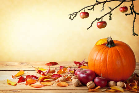 Autumn pumpkin composition on wooden table with copy space photo