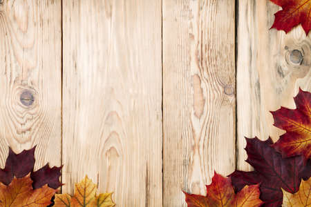 timber frame: Autumn maple leaves on wooden background with copy space  Top view Stock Photo