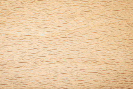 Beech wood texture for background. Natural plank macro shot