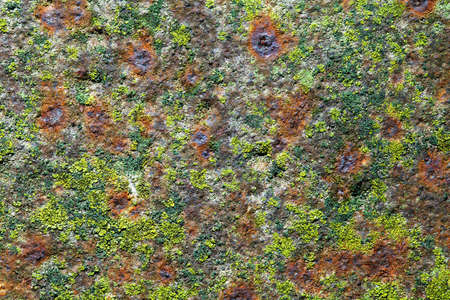 corrosion: Old rusty iron for background with spots of moss