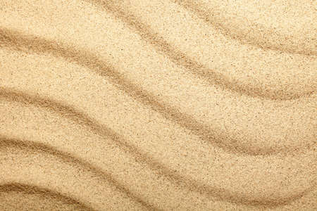 Sandy beach. Sand texture for background. Top view