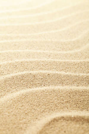 sand grains: Sandy background Stock Photo