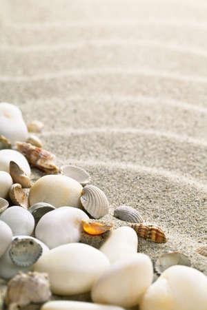 Sabbia con conchiglie e pietre. Composizione spiaggia con spazio di copia Archivio Fotografico - 19055690