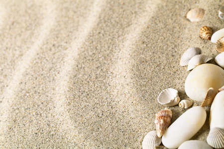 Sand with shells and stones. Beach composition with copy space Stock Photo