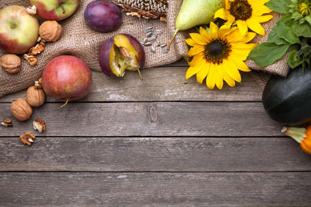 Autumn background with fruits and sunflowers. Copy space. Top view Stock Photo