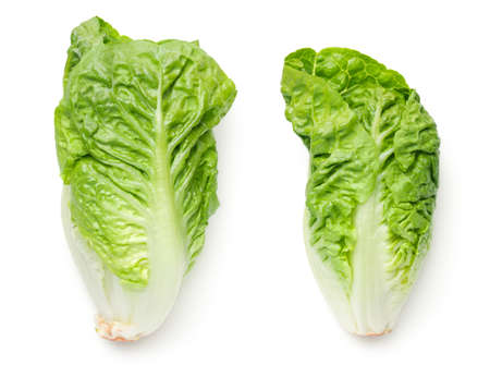 Romaine lettuce isolated on white background. Baby cos. Top view Stock Photo