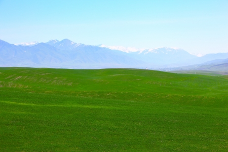 Green meadows with mountains  photo