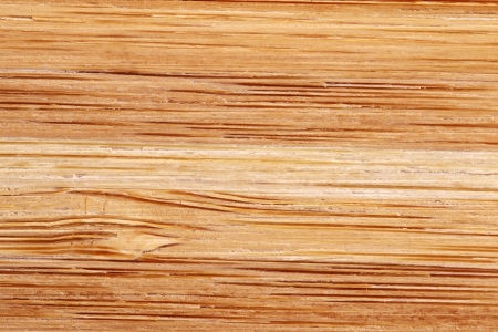 logwood: Bamboo texture with horizontal stripes Stock Photo