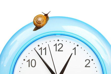 grape snail: Grape snail climbing on a clock, isolated on white Stock Photo