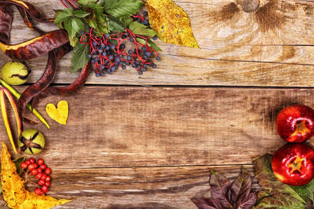 Frame of autumn leaves and berries on old wood background photo