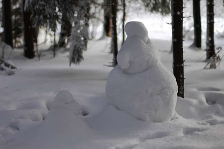 Christmas snowman covered with snow  in winter forest photo