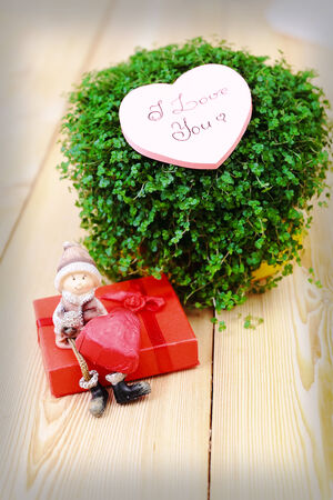 Valentine greeting card with green plant, giftbox and boy figurine photo