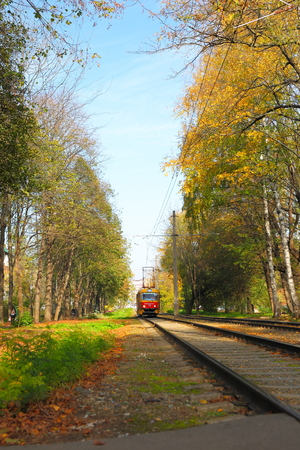 tramcar: Railway and old tramcar in autumn forest