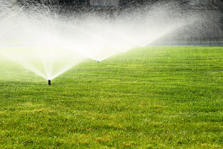 garden sprinkler on a sunny summer day during watering the green lawn photo