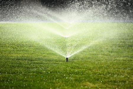 Arrosage du jardin sur une journée d'été ensoleillée lors de l'arrosage de la pelouse verte Banque d'images - 31760402