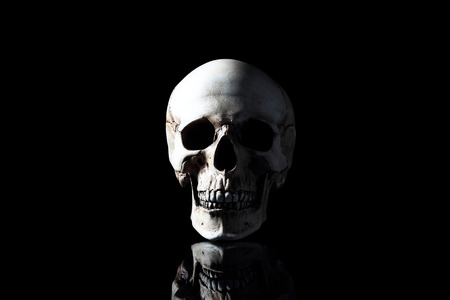Realistic model of a human skull, frontal view on a black background Stock Photo