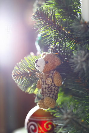 christmas  eve: Small bear toy on the christmas tree, close up