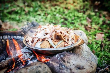 Cooking fresh mushrooms on campfire, tourism trekking Stockfoto
