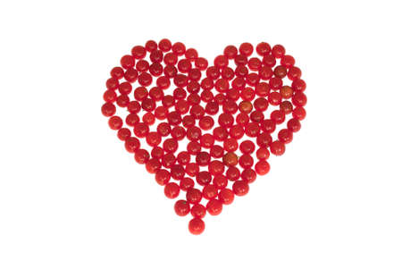 Heart pictured by berries of viburnum. Isolated on a white background. Stock Photo - 15124883