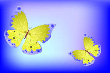 butterfly as abstract background
