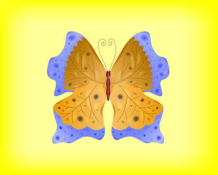 Vector abstract butterfly. Vector illustration. EPS-10. Transparency and gradient mesh used.