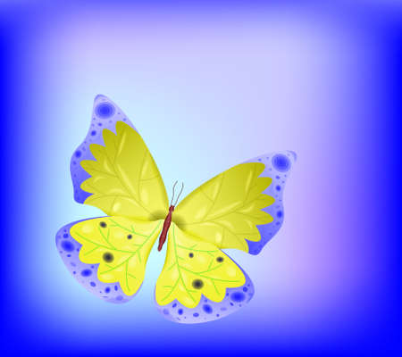Butterfly  illustration  Transparency and gradient mesh used