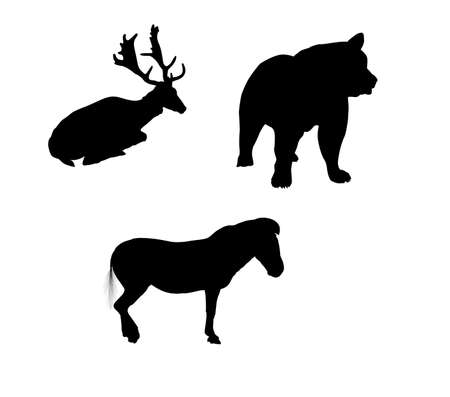 animals silhouette.  Vector