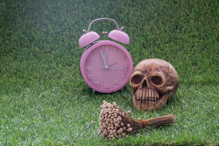 to pass away: Still life of human skull and dry flower and pink clock on green grass sign of death