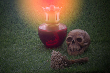 pass away: Still life of human skull and dry flower and lamp on green grass sign of death