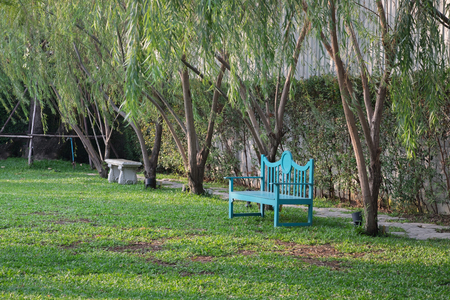 graden: Blue garden chair in garden with many green tree and pathway  Blue chair in graden Stock Photo
