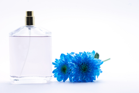 blue daisy: blue daisy flower navy blue daisy flower and perfume on white  isolate background text word on background daisy flower beautiful daisy lovely daisy pretty daisy fresh daisy