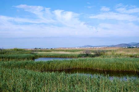 Lagoons in Puzol Valencia in the background Monte Picayo Banco de Imagens