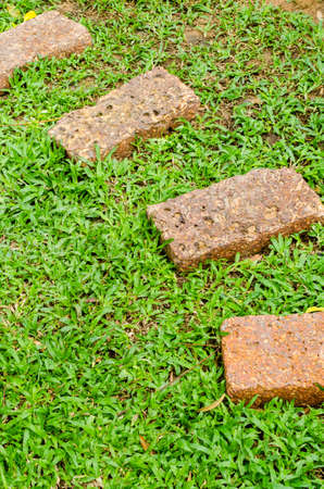 pave: Stone walkway on green grass