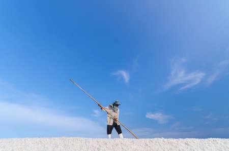 harvest field: Worker is harvesting sea salt at salt field in Samut Songkhram province, Thailand. Editorial