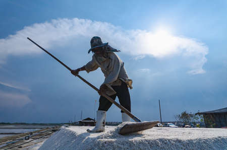 equalize: Worker is harvesting sea salt at salt field in Samut Songkhram province, Thailand. Suitable for use background and place text over photo. Editorial