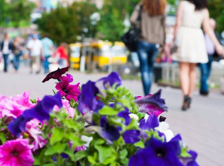 young womens: People walking along a city street. Flowers on the front plane.