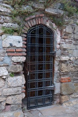 Ancient door grill in the old brick wall. photo