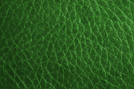 green leather background   photo