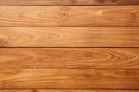 maple tree: wood pattern
