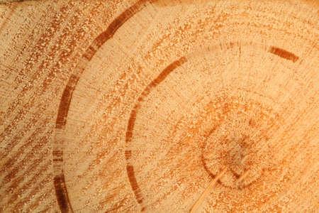wooden texture round photo