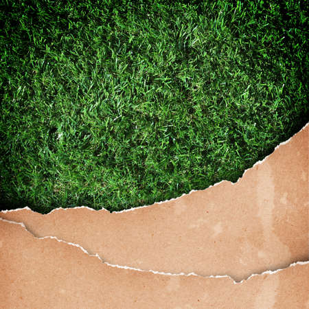 antiqued: old paper on grass background Stock Photo