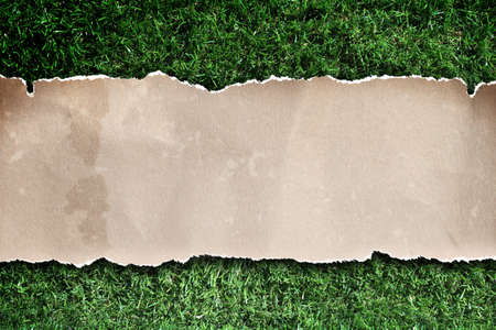 recycled paper on grass. Stock Photo - 13566202