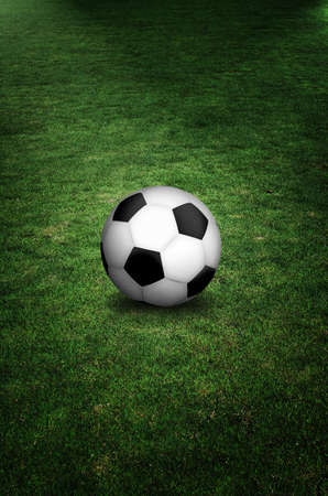 soccer ball in field   photo