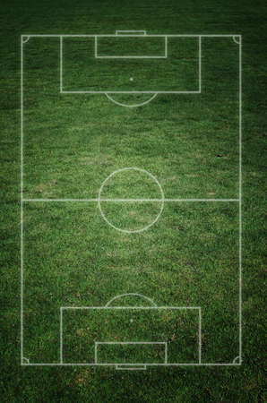 soccer field with real grass texture